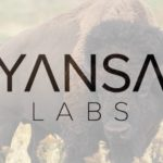 My new ServiceNow Adventure: Yansa Labs